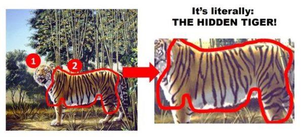 hidden tiger puzzle
