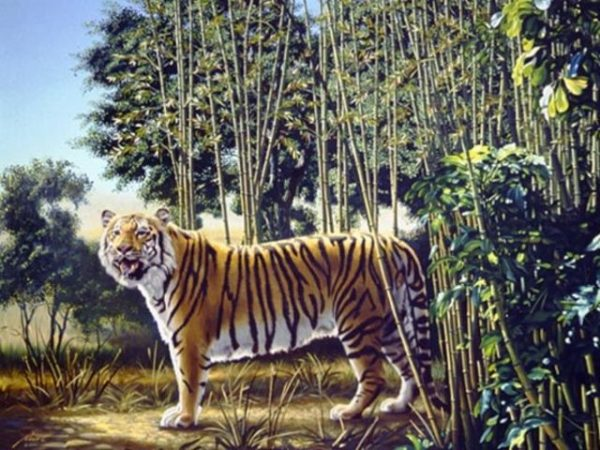 hidden tiger in a painting