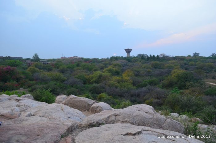 Parthasarthy Rocks JNU delhi