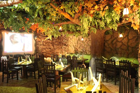 Rainforest restaurant best place for couples in mumbai