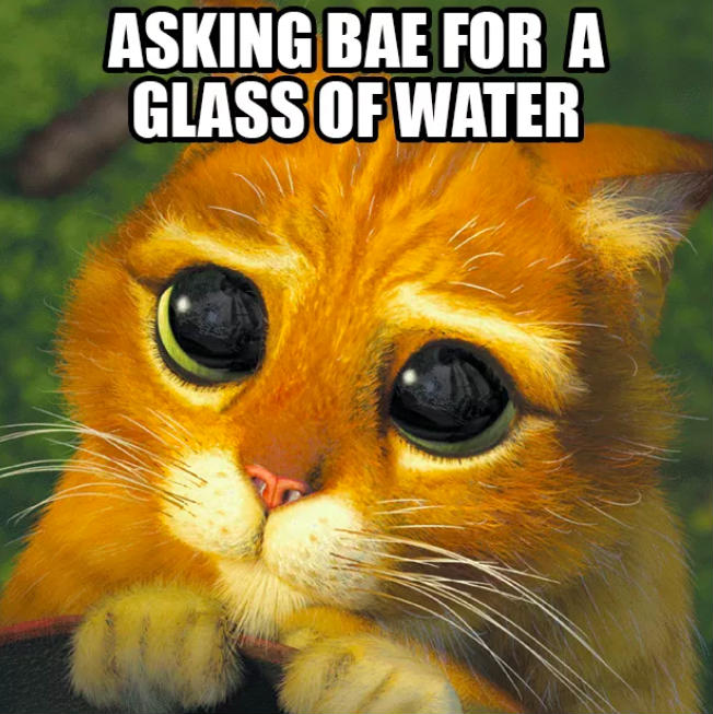 Adorable Relationship Memes