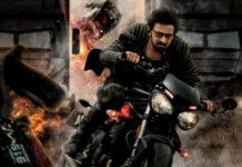 Kabir Singh Movie Leaked on Tamilrockers Online for Free