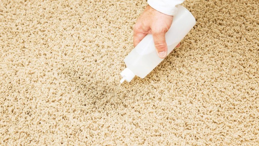 soak solution on carpet